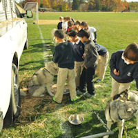 Students meet the sled dog team