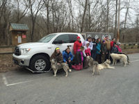 A Girl Scout troop poses with the sled dogs after their program.